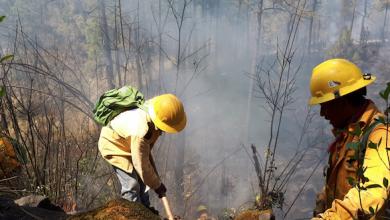 """Photo of Incendio forestal en el paraje """"Cruz del niño"""" en #Huitzilac"""
