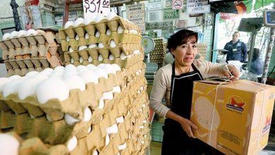 Photo of Aumentan hasta 18% el precio del huevo