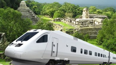 "Photo of Avances del Tren Maya ""violentan derechos"" y marco legal ambiental"