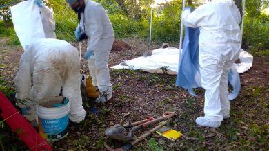 Photo of Fiscalía inicia exhumación en fosa clandestina de Puente de Ixtla