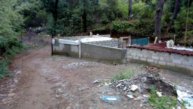 Photo of Cada año roban hectáreas de tierra en Tetela del Monte y nadie se hace responsable