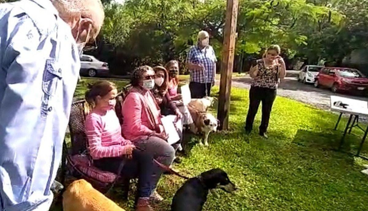 Photo of Llaman rescatistas a adoptar a perros localizados en un terreno en Rancho Cortés