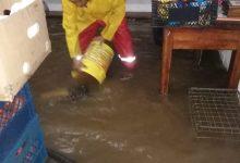 Photo of Encharcamientos, inundaciones y daños materiales, arrojaron las torrenciales lluvias de anoche