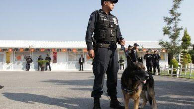 Photo of Por buenos resultados se incrementará número de caninos en aduanas